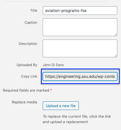 screen shot of a WordPress media library item indicating where to find the file link